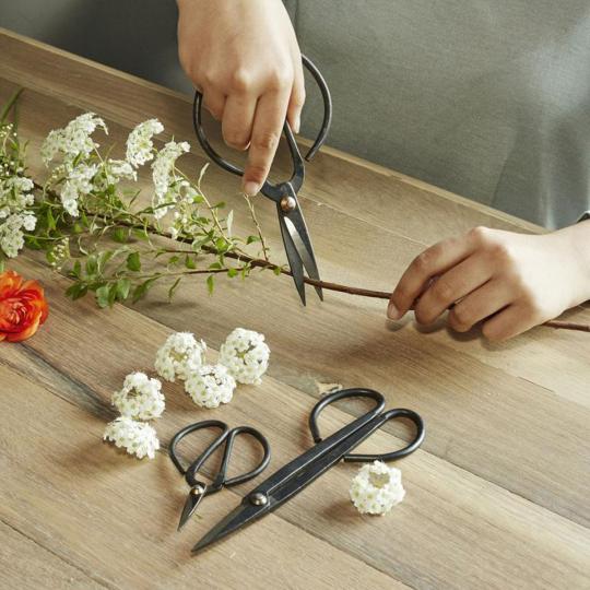 3 Scheren für Blumen und Pflanzen.