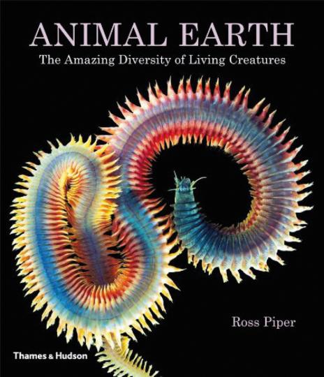 Animal Earth. Die erstaunliche Vielfalt von Lebewesen.