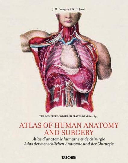 Atlas der menschlichen Anatomie und der Chirurgie.