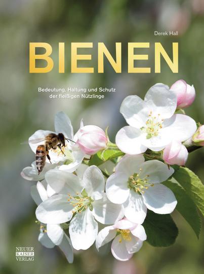 Bienen. Haltung & Schutz. Alles Wissenswerte über die Nützlinge.