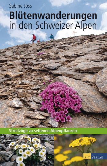 Blütenwanderungen in den Schweizer Alpen. Streifzüge zu seltenen Alpenpflanzen.