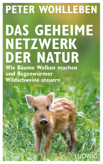 Das geheime Netzwerk der Natur. Wie Bäume Wolken machen und Regenwürmer Wildschweine steuern.