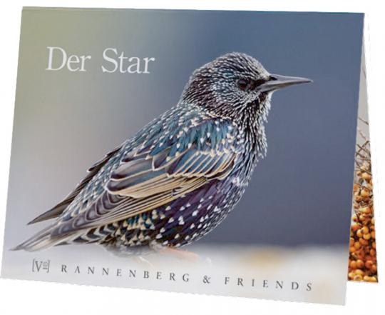 Der Star - Postkartenbuch