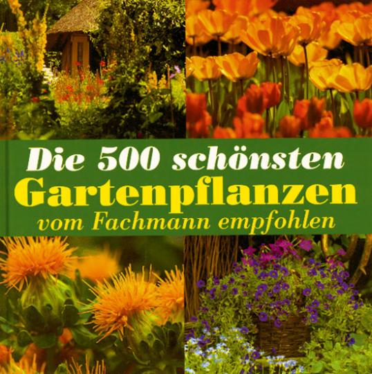 Die 500 schönsten Gartenpflanzen vom Fachmann empfohlen
