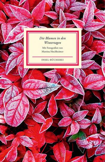 Die Blumen in den Wintertagen. Bilder und Texte.