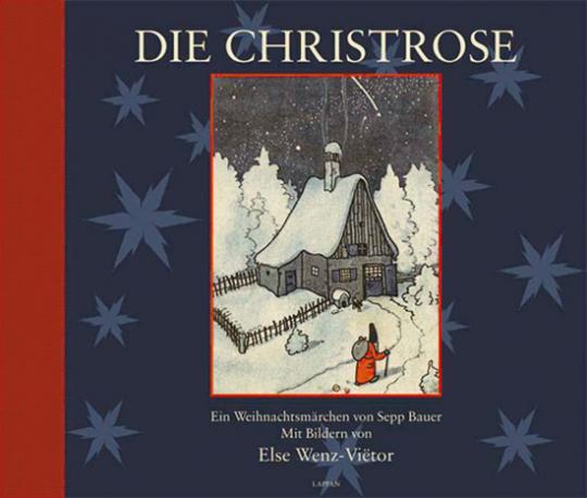Die Christrose.