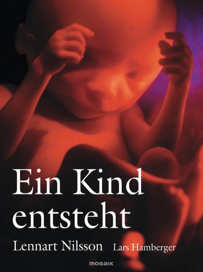 Ein Kind entsteht. Bilddokumentation über die Entwicklung des Kindes im Mutterleib.