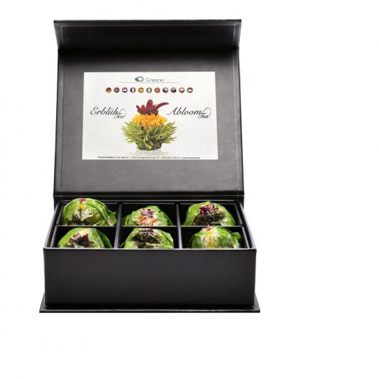 Erblüh-Tee-Blumen Grün. 6er-Set. Magnetbox mit Silberprägung.