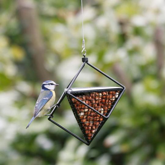 Erdnuss-Spender für Vögel, schwarz.