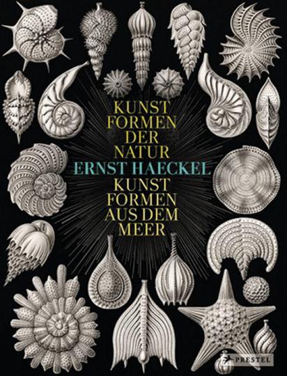 Ernst Haeckel. Kunstformen der Natur - Kunstformen aus dem Meer.