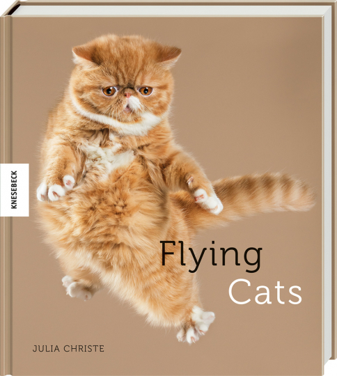 Flying Cats. Katzen in der Luft.