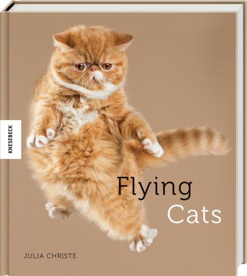 Flying Cats. Katzen in der Luft.