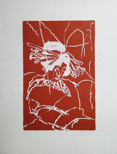 Friedemann Hahn. Japanerin rot.