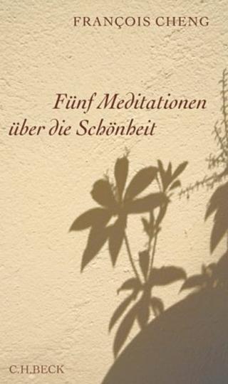 Fünf Meditationen über die Schönheit.