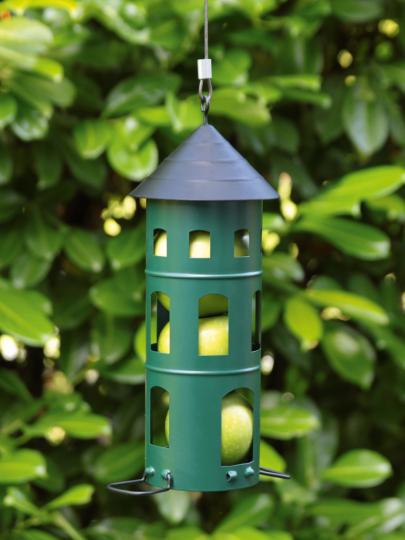 Futterstation für Nüsse, Äpfel & Meisenknödel, grün.
