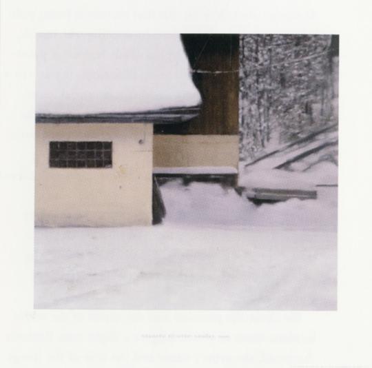Gerhard Richter. Gehöft 861-1, 1999.