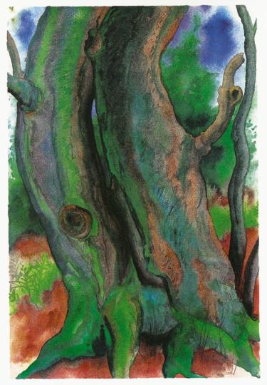 Günther Grass. Bäume II.
