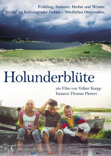 Holunderblüte DVD