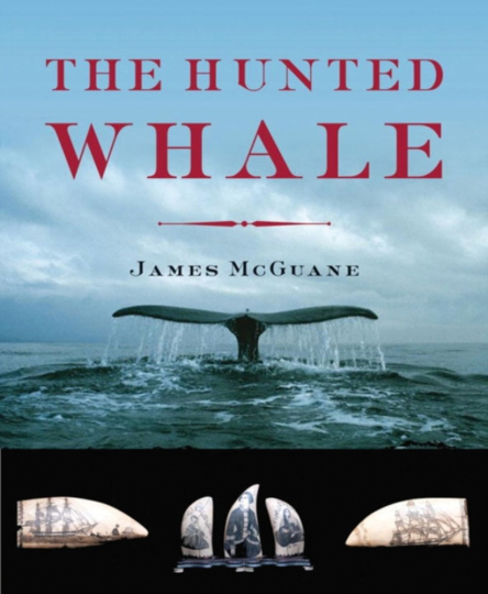 Hunted Whale.