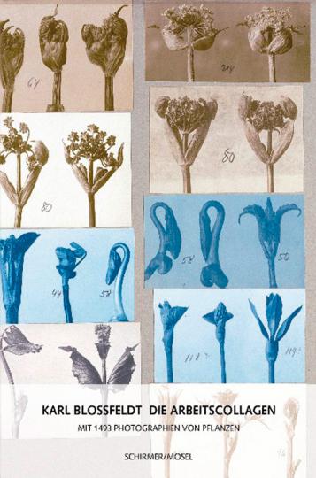 Karl Blossfeldt. Die Arbeitscollagen. Mit 1493 Photographien von Pflanzen.