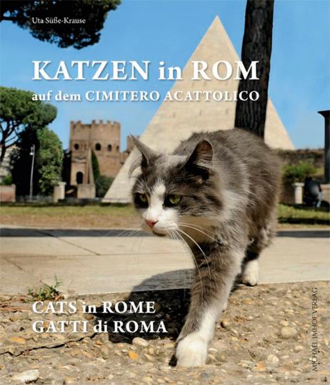 Katzen in Rom auf dem »Nicht-Katholischen Friedhof«.