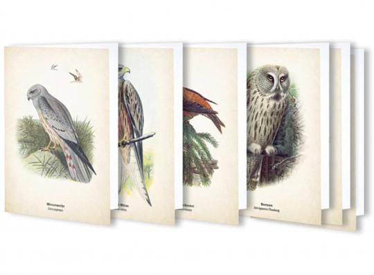 Kunstklappkarten mit Vögeln.
