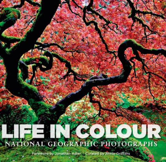 Life in Colour. Das Leben in Farbe. National Geographic Fotografien.