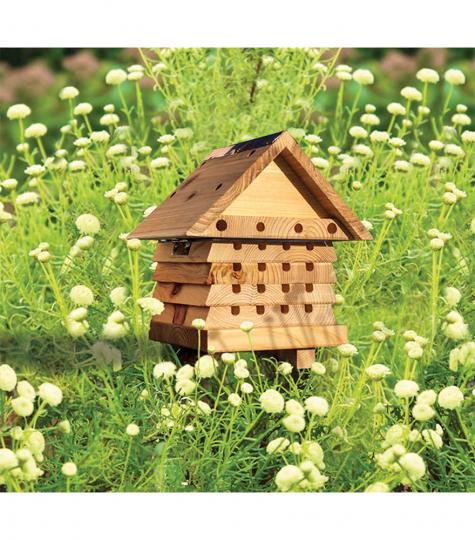 Nisthilfe für Bienen.