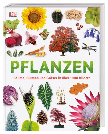 Pflanzen. Bäume, Blumen und Gräser in über 1000 Bildern.