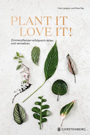 Plant it - love it! Zimmerpflanzen erfolgreich teilen und vermehren.