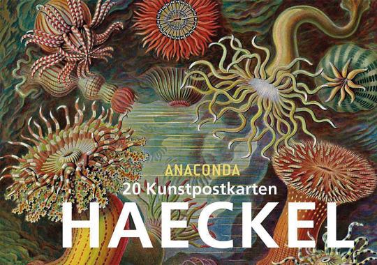 Postkartenbuch Ernst Haeckel.
