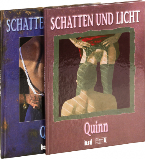Schatten und Licht. Teil 2. Graphic Novel.