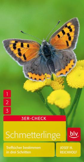 Schmetterlinge. Treffsicher bestimmen in drei Schritten.