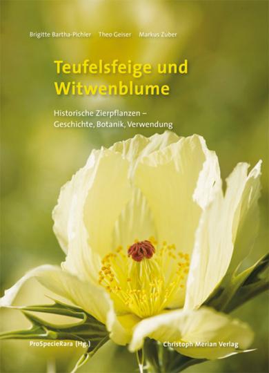 Teufelsfeige und Witwenblume. Historische Zierpflanzen.