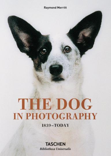 The Dog in Photography. 1839 - Today. Die besten Hundefotos.