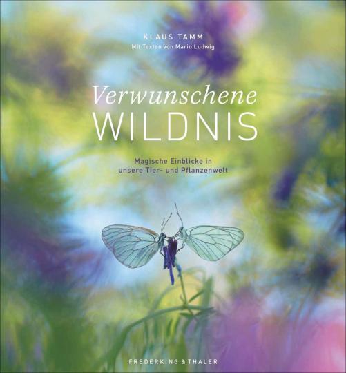 Verwunschene Wildnis. Magische Einblicke in unsere Tier- und Pflanzenwelt.