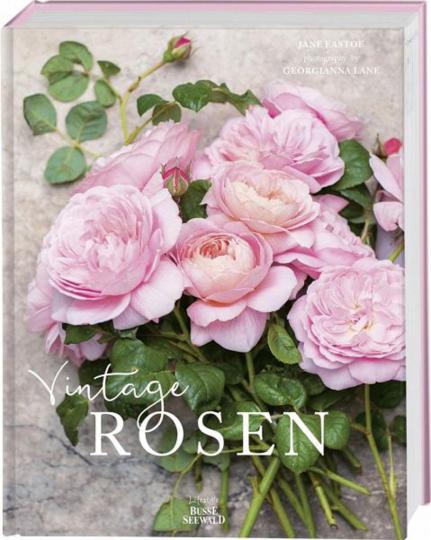 Vintage Rosen.
