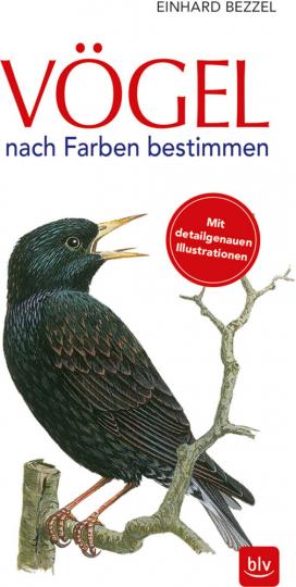 Vögel nach Farben bestimmen