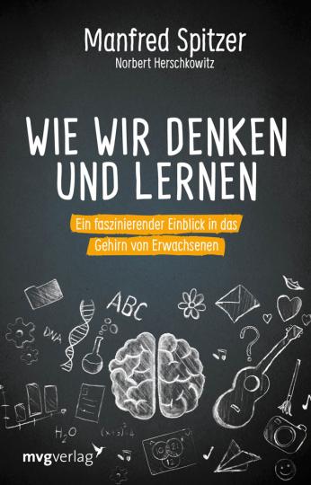 Wie wir denken und lernen. Ein faszinierender Einblick in das Gehirn von Erwachsenen.