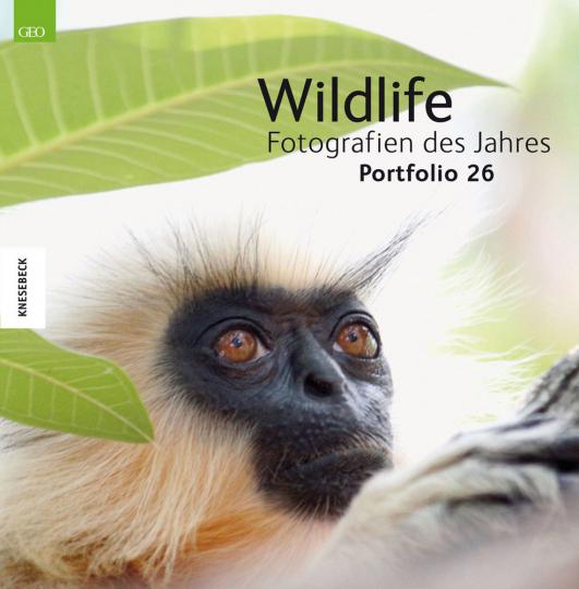 Wildlife. Fotografien des Jahres. Portfolio 26.