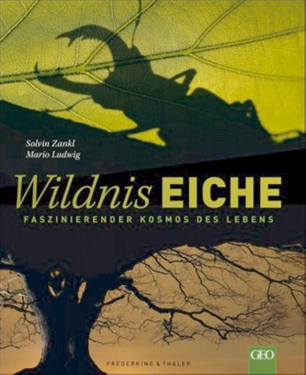 Wildnis Eiche - Faszinierender Kosmos des Lebens
