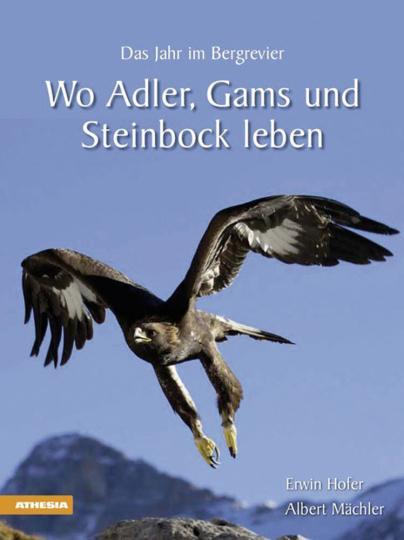 Wo Adler, Gams und Steinbock leben. Das Jahr im Bergrevier.