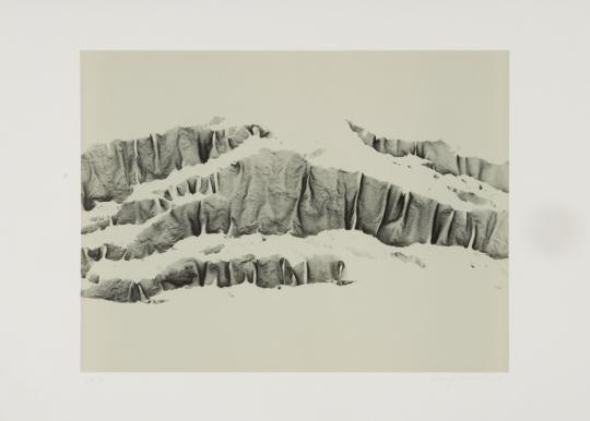 Xiao Hui Wang. Nano Carbon.
