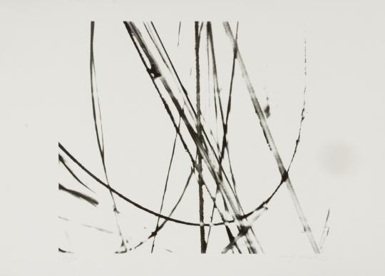 Xiao Hui Wang. Nano Glass No.8.