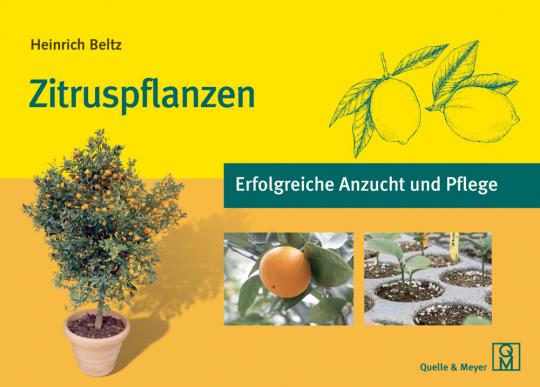 Zitruspflanzen - Erfolgreiche Anzucht und Pflege