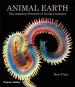 Animal Earth. Die erstaunliche Vielfalt von Lebewesen. Bild 1