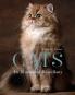 Cats. An Illustrated Miscellany. Eine illustrierte Auswahl wundervoller und berühmter Katzen. Bild 1