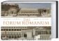Das Forum Romanum. Bild 1