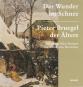 Das Wunder im Schnee. Pieter Bruegel der Ältere. Bild 1