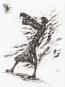 Günter Grass: Die Box - Dunkelkammergeschichten Vorzugsausgabe I Bild 1